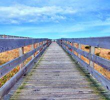 Up The Long Boardwalk by Jennifer Hulbert-Hortman