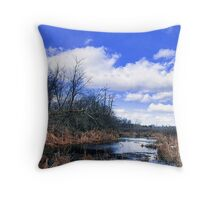 Beauty and The Bog - Winding Water Throw Pillow