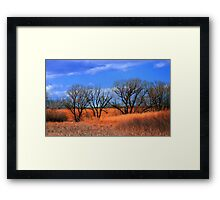 Beauty and the Bog - Glowing Grass Framed Print