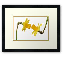 Flowers in love Framed Print