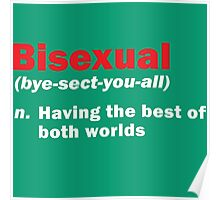 Funny Bisexual Dictionary Definition Quote Gay Phrase Poster
