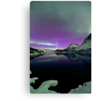 Aurora Borealis & snow Canvas Print