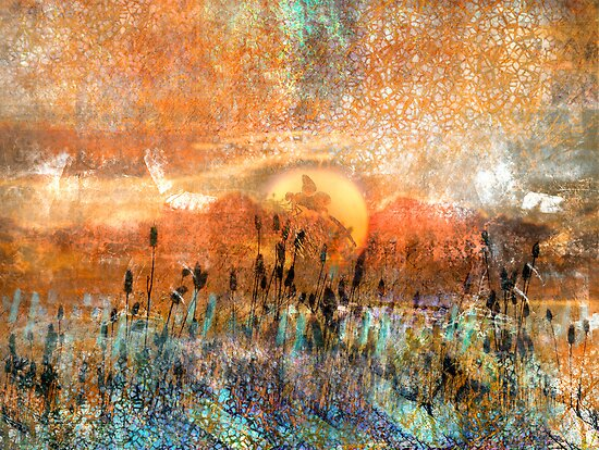 Pond Play... Even dragonflies need the Sun by linaji