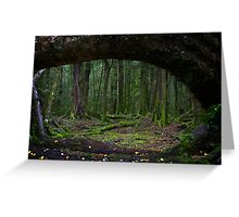 The Forest, Paradise, NZ Greeting Card