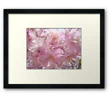 Floral Spring Flowers Landscape Fluffy Pastel Blossoms Baslee Troutman Framed Print