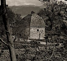 Penmon Priory Dovecot by Nigel Fletcher-Jones