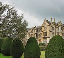 Another View Of Montacute House by lynn carter
