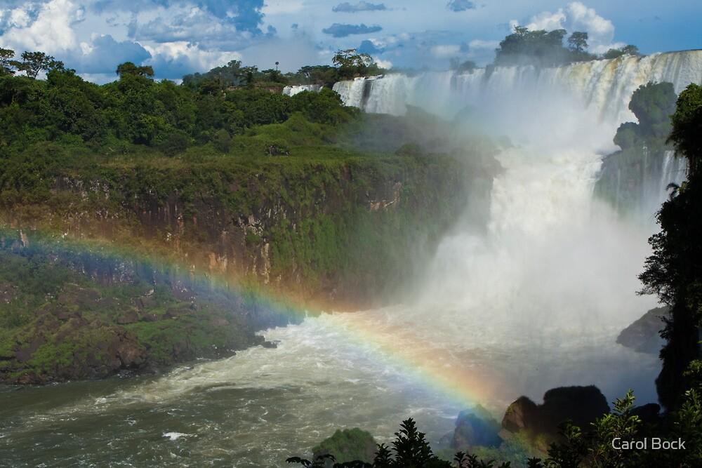 Rainbow Falls by Carol Bock