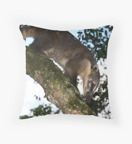 Coati Throw Pillow