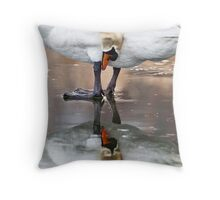Mute Swan Reflection Throw Pillow