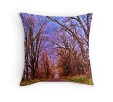 Entrance To The World Throw Pillow