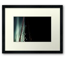 Ode to glass (2) Framed Print