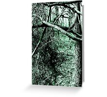 Tangled Forestry Greeting Card