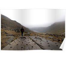 Glendalough walking planks Poster