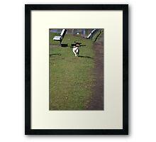 I Like a Challenge. Framed Print