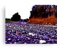 Road To Nowhere And Everywhere Canvas Print