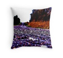 Road To Nowhere And Everywhere Throw Pillow