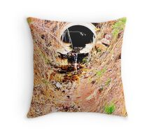 Taken For Granted Throw Pillow