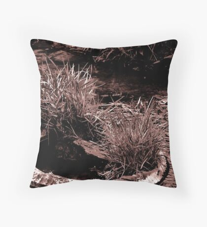 Overcoming Obstacles Throw Pillow