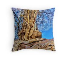 Scarred Ancestor Throw Pillow