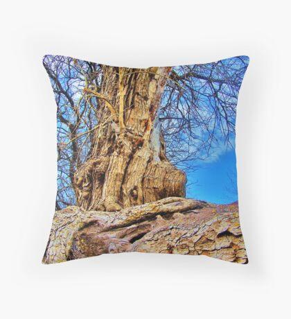 Scarred Ancestor Throw Pillow