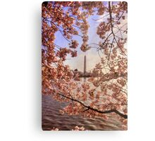 Cherry Blossoms And the Washington Monument Metal Print