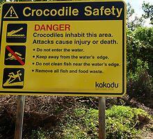 A warm welcome awaits in the Kakadu National Park by georgieboy98