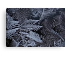 frost 3 Canvas Print