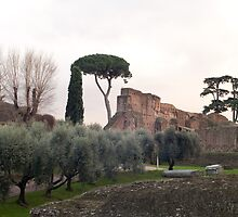 Roman Forum in winter by fab2can