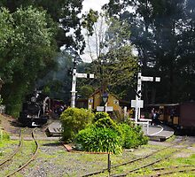 Menzies Creek Station Victoria Australia by Alison Murphy