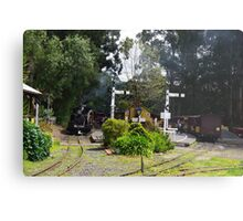 Menzies Creek Station Victoria Australia Metal Print