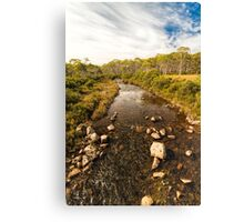 Navarre River, Nr. Derwent Bridge, Tasmania #3 Canvas Print