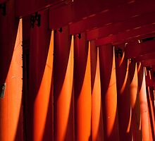 Tori at Fushimi Inari - Kyoto, Japan 1 by fab2can
