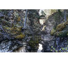 Below Athabasca Falls Photographic Print