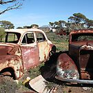 Car Graveyard, Koonalda by Cheryl Parkes