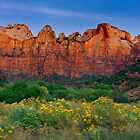 Zion_1 by photo702