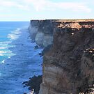 The Great Australian Bight by Cheryl Parkes