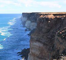 The Great Australian Bight by Cheryl Parkes