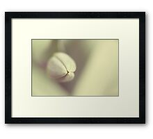 Tulip and Heart Framed Print