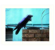 Urban Raven 1 Art Print