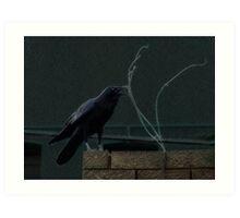 Urban Raven 2 Art Print