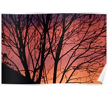 RED SUNSET  SKY Poster