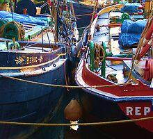Ahoy by Tania Ackermann