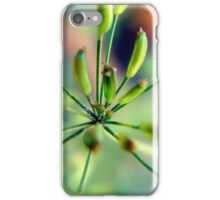 Caraway Pods iPhone Case/Skin