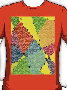 Colour Anyone? T-Shirt