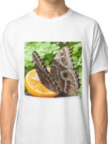 butterffly on fruit Classic T-Shirt