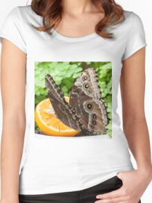 butterffly on fruit Women's Fitted Scoop T-Shirt
