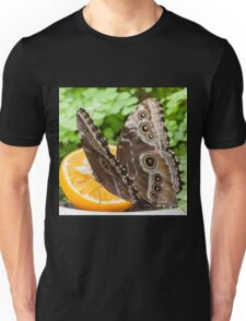 butterffly on fruit Unisex T-Shirt