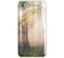 Constancy iPhone Case/Skin