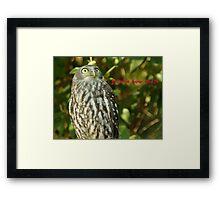 It's an owl Framed Print